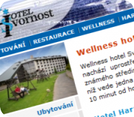 Wellness hotel Svornost*** Harrachov