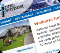 Wellness hotel Svornost*** Harrachov